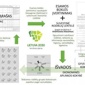 Lietuvos Respublikos teritorijos bendrasis planas